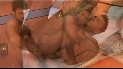ass  bareback  brazilian gays