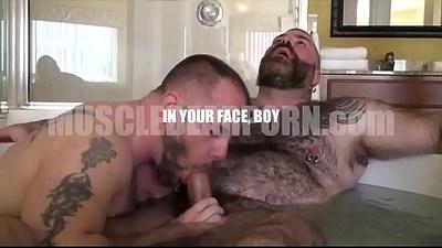 bears  cocks  gay sex