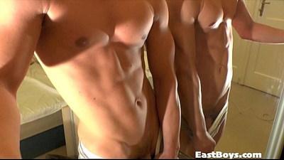 bodybuilder  cocks  european gays