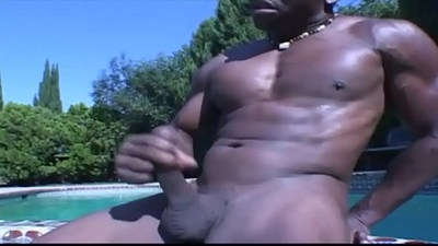 ass   black gay   cocks