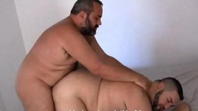 bears  gay sex